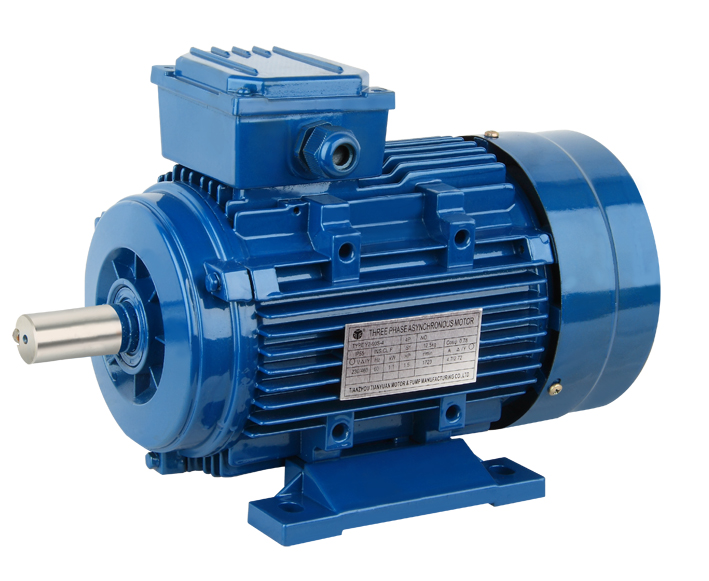 Y2 series three phase induction motor taizhou tianyuan for Three phase induction motor